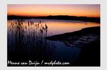 Menno van Duijn Natuur fotograaf