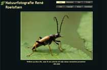 René Roelofsen Natuur fotograaf
